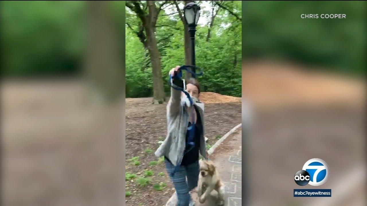 """""""Central Park Karen"""" Amy Cooper"""