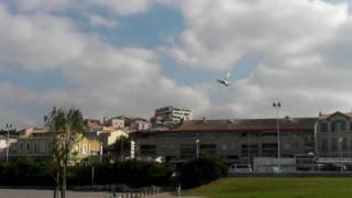 : Avitron, le premier oiseau bionique