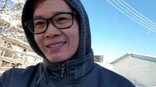 Vlog Kerja Bab Potong Kayu