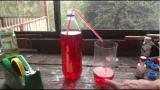 getlinkyoutube.com-How to make a Straw Syphon - Simple Science Experiment - Uses Everyday Items