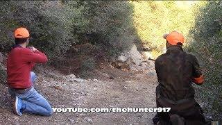 Köpek Kamerasından  Domuz Avı Wild Boar Hunting