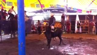 getlinkyoutube.com-El cachorro de san Gregorio cuautzingo
