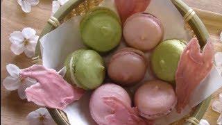 getlinkyoutube.com-春マカロン 桜の花びらチョコ spring macaron sakura petal choco