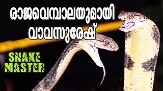 getlinkyoutube.com-Vava Suresh captures his 70'TH King Cobra | Snake Master - Episode-57 - Kaumudy TV