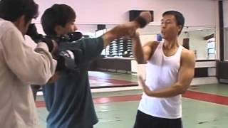 getlinkyoutube.com-Donnie Yen Style of Action