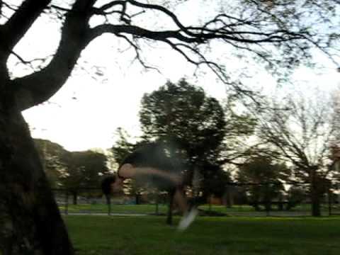 Primeros Treeflips