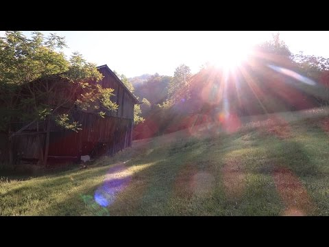 What Is Homesteading? - Facing The Future