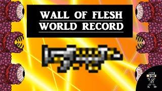 getlinkyoutube.com-Terraria 1.2.4 Wall of flesh WORLD RECORD SPEEDKILL (1.23 seconds) [beaten]