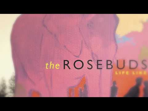 Nice Fox - The Rosebuds