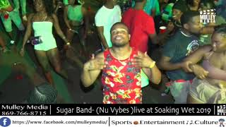 Sugar Band live at Sunrise Promotions Soaking Wet 2019