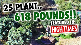 "25 Plant ""618""lb. Mendo Dope Marijuana Garden featured in High Times Magazine."