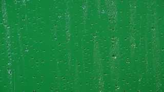 getlinkyoutube.com-Transparent Drops Of Rain - Stock Footage Alpha PNG Quicktime