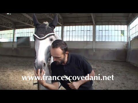 Cessione alla gamba - Francesco Vedani -prima parte