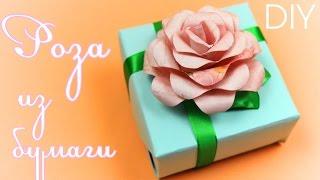 getlinkyoutube.com-Роза из бумаги Своими руками / Paper Rose Tutorial / ✿ NataliDoma      DIY Crafts Цветы
