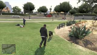 getlinkyoutube.com-GTA 5 - Playing With The Dog