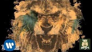 Lil Boosie - Heart Of A Lion