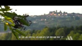 getlinkyoutube.com-世界歷史 096 猶太復國主義及以色列建國
