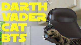 getlinkyoutube.com-Darth Vader Cat BTS