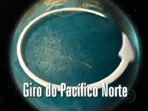 Um oceano de plástico   A sujeira se acumula no Lixão do Pacífico (matéria do Fantástico)