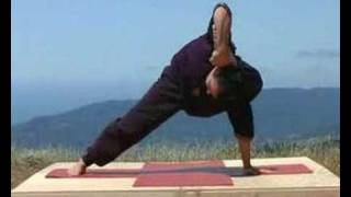 getlinkyoutube.com-Universal Yoga Demo with Andrey Lappa