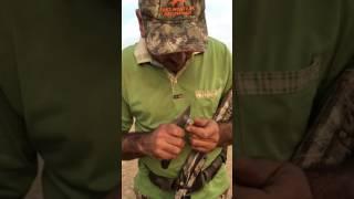 getlinkyoutube.com-كيف تجعل خرطوش الصيد الاعتيادي عيار ثقيل لصيد الخنزير البري(wild boar)