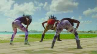 Bruk It Down / Party Tun Up  MR VEGAS ft ALISON HINDS (Official Video) 2012 - (Game Over) width=