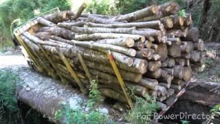 """getlinkyoutube.com-Camiones forestales """"videos varios"""""""