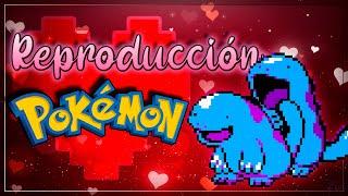 getlinkyoutube.com-La Reproducción Pokémon