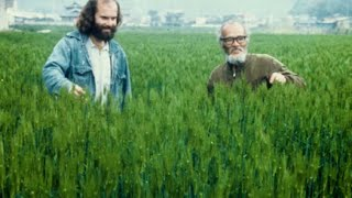 Larry Korn: Permaculture and the Philosophy of Masanobu Fukuoka