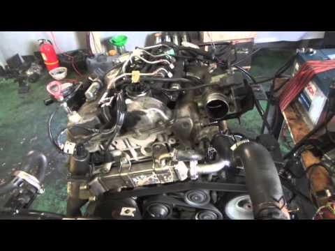 Проверка давления масла в двигателе D20DT Евро Актион 2.0 XDi