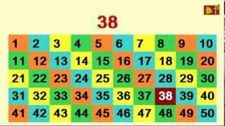 Learn Numbers 1-50 counting in English