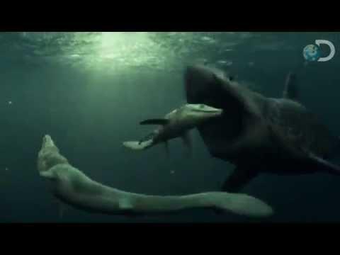 Mossasaur VS Megalodon Shark