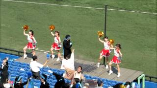 getlinkyoutube.com-東京六大学野球 東京大学 応援風景(H26.9.13 慶應1回戦)