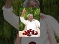 Errodu Telugu Full Length Movie || ఎర్రోడు  సినిమా || R. Narayana Murthy , Indraja