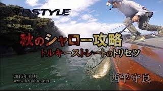 getlinkyoutube.com-【DSTYLE】秋のシャロー攻略 ~トルキーストレートのトリセツ in 琵琶湖~ 西平守良
