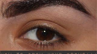 getlinkyoutube.com-How to grow back your eyebrows