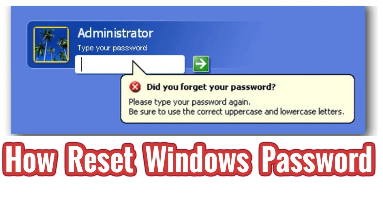 forgot administrator password windows 10 youtube