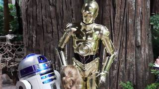 getlinkyoutube.com-C-3PO talks with guests at Disney's Hollywood Studios during Star Wars Weekends