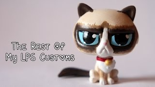 getlinkyoutube.com-My LPS customs: The rest (Grumpy Cat, Doge, my cats and others!)