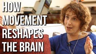 AnatBaniel- Movement, Learning & Brain Plasticity
