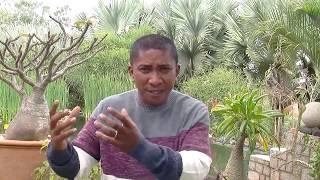 Miomàna 228: Mazotoa miasa 10 05 2020