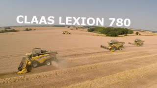 getlinkyoutube.com-The biggest harvest in Europe 2015 | Claas LEXION 780 | New holland CX 8080 | 4K | [KR Kietrz]