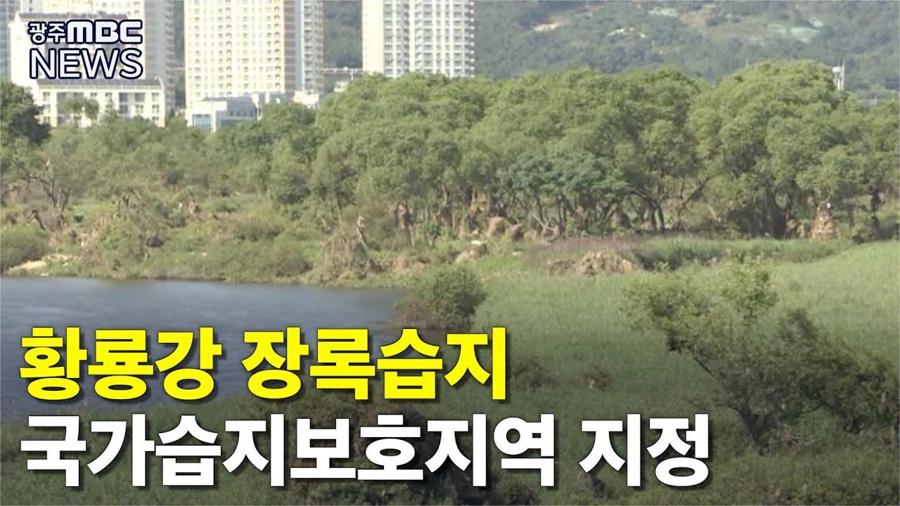 (장록습지) 황룡강 장록습지, 국가습지보호지역 지정