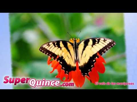 Quinceanera dance - vals de las mariposas