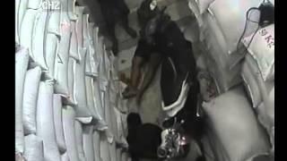 getlinkyoutube.com-Perampokan bersenjata bos kedelai di Cicalengka