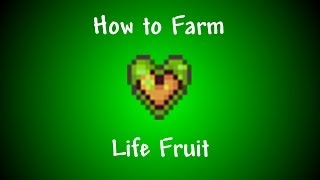 Terraria 1.2 - How to Harvest Life Fruit