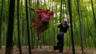getlinkyoutube.com-Ayane vs Princess Kasumi
