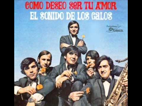 LOS GALOS - COMO DESEO SER TU AMOR -mCo6OD8FPu8