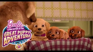 Meet Honey, Rookie, and DJ | Barbie & Her Sisters in a Great Puppy Adventure | Barbie