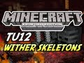 Minecraft (Xbox 360) - TU12 Update - NO Wither Skeletons + More Features!